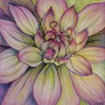 Dahlia by: Colleen Beyer,Watercolor and Pastel on Paper, 8