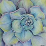 Succulent by: Colleen Beyer,Watercolor and Pastel on Paper, 8